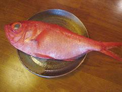 金目鯛の刺身、煮つけ、塩焼きと最高の金目で 作った料理でお待ちしています。