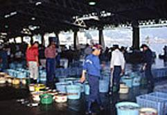 伊豆網代港魚市場